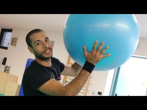 8 ESERCIZI CON LA PALLA ( SWISS BALL / FIT BALL)  GLUTEI , ADDOME E BRACCIA.