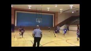 memphis dragons 2016 community center 12u basketball champions