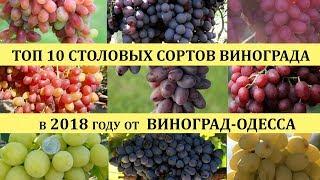 видео Что такое виноград