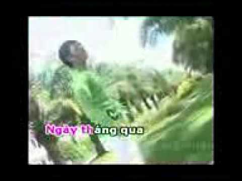 Karaoke nguoi do toi day tinh dau YouTube YouTube