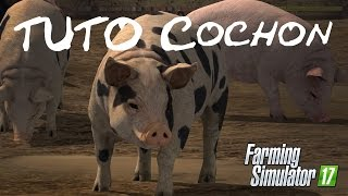 [TUTO] FS 17 | Fonctionnement des cochons