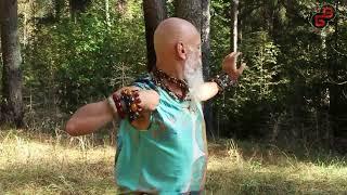 Бронислав Виногродский. Цигун в лесу