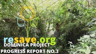 Progress Report No.3 | Dominica Project