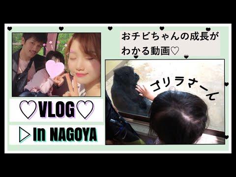 【Vlog】名古屋満喫♡ホテル/東山動物園/買い物/鰻屋