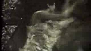 Tapioca Tundra