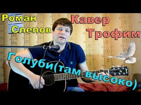 Трофим - голуби (там высоко)/ кавер под гитару/ песни под гитару