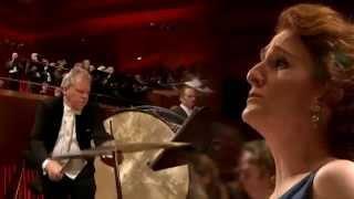 Pogo | Symphony #69 (Carmina Burana Remix)