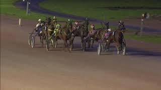 Vidéo de la course PMU PRIX READLY EXPRESS