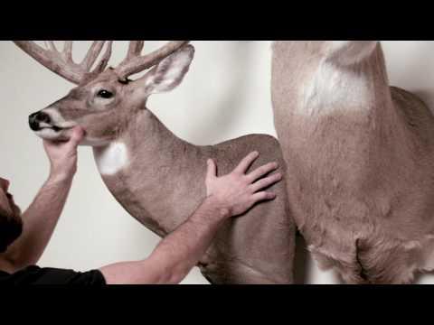 Deer Feeders, Deer Feeder Parts & Accessories