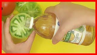 Manzana las venas de de se de deshace hilo? vinagre ¿El