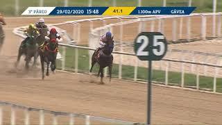 Vidéo de la course PMU PREMIO OLEANDER