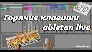 Горячие клавиши ableton live.  Часть 1