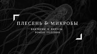 Плесень и микробы интересное и познавательное (бактерии и вирусы). Роман Головин