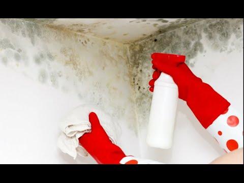 Como Limpiar hongos,  MOHO y humedades. REMOVE MOLD. English subtitles
