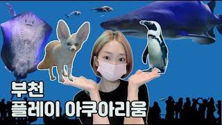 부천 플레이 아쿠아리움 동물 구경/ Aquarium V…