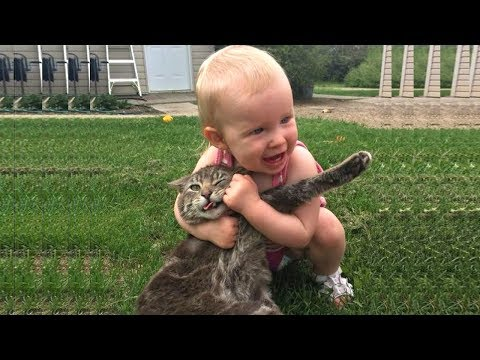 Babies can't stop laughing by cat 😂 Funny Babies and Cats moment