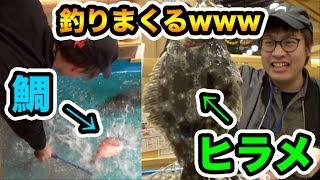 釣り堀居酒屋で巨大な鯛とヒラメを釣りまくって贅沢に刺身と握りで食べる!!!!