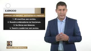 Szólalj meg! – spanyolul, 2017. február 3.