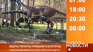 Смотрите на «Мире Белогорья» сегодня, 26 апреля