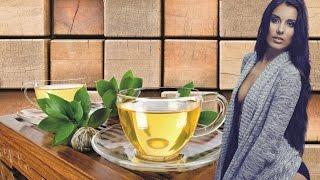 Имбирный чай с шиповником для похудения. Выводит лишнюю жидкость и токсины. Эффективные диеты.
