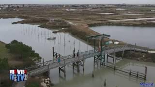 Le Port du Plomb - L'Houmeau