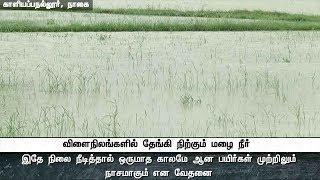 கனமழை: