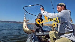 Преднерестовый ЖОР трофейной щуки рыбалка на спиннинг 2021