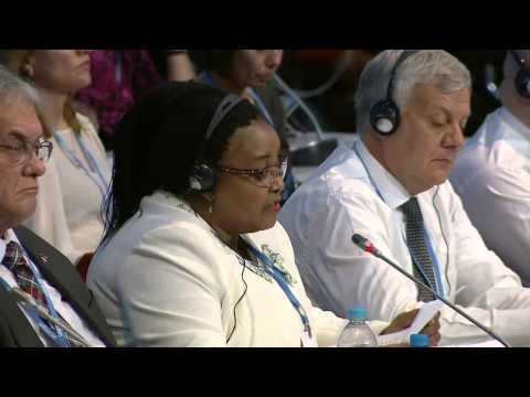 h e ms edna molewa minister of environmental affairs of south africa