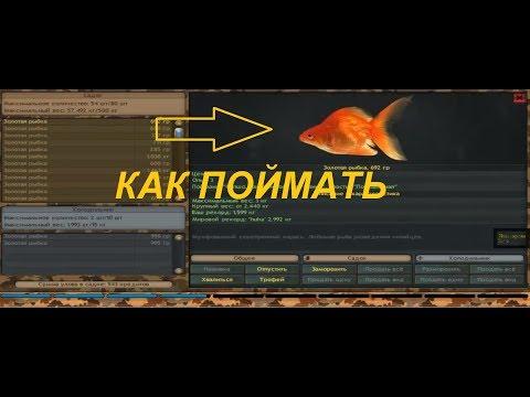 Как поймать Золотую рыбку в Фантастической рыбалке / Fantastic Fishing