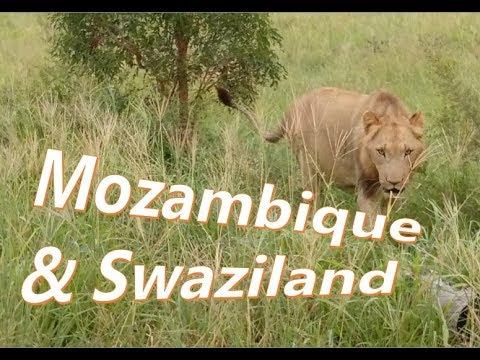 Mozambique & Swaziland Trip