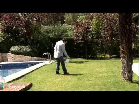 Eliminar malas hierbas
