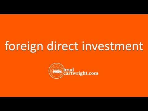 Foreign Direct Investment Unit:  Introduction and Overview