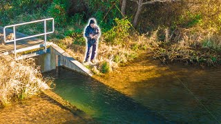 Bank Fishing Clear Drainage Ponds For Winter Bass (finesse)