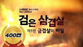 전주MBC 특집다큐