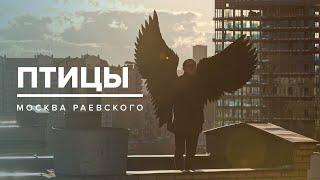 ПТИЦЫ | История Москвы - Москва Раевского