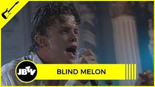 Blind Melon - Paper Scratcher   Live @ Metro