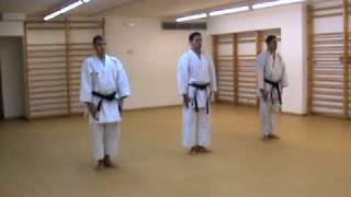 Oyo Bunkai Pinan Godan (www.karateBCN.com)