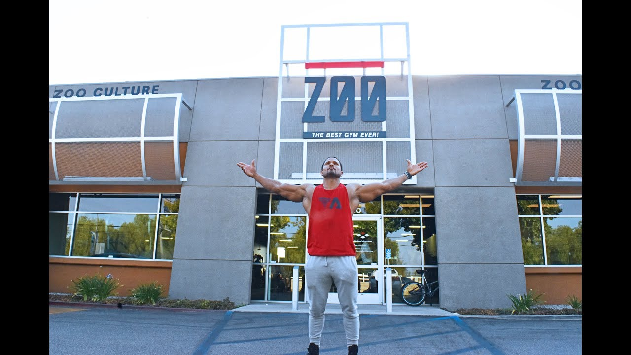 DAMIEN PATRICK-BACK WORKOUT AT ZOO CULTURE GYM