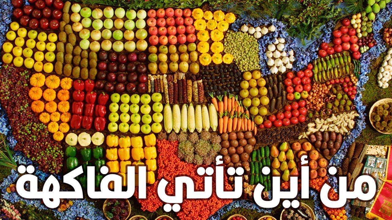 شاهد كيف توزع الفاكهة نفسها على العالم !