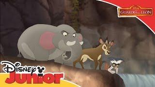 La Guardia del León: Los tres a una | Disney Junior Oficial