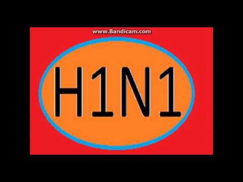H1N1 _ RAP