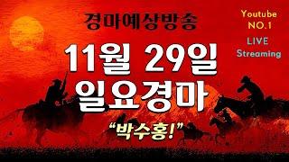 [경마] 11월29일 일요경마