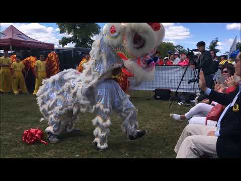 Awesome Chinese Dragon and Lion Dance