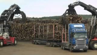 Proceso del transporte de madera