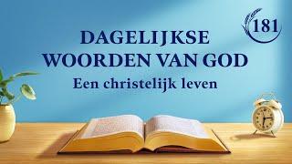 Dagelijkse woorden van God | Gods werk en het werk van de mens | Fragment 181