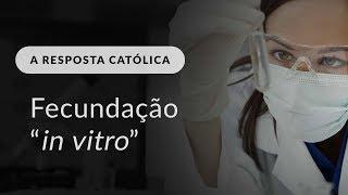 17 - A Resposta Católica: Fecundação In Vitro
