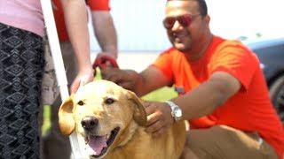 Team Honda Week of Service 2018: Puff n' Fluff Fundraiser for Humane Society of Eastern Carolina
