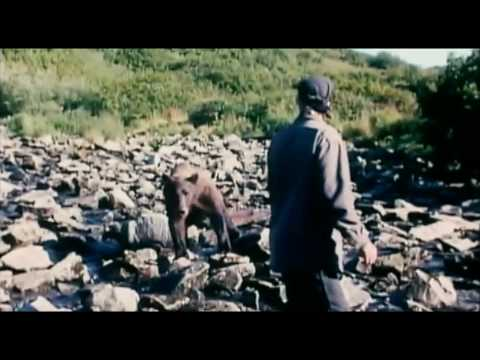 Grizzly Man Trailer HD