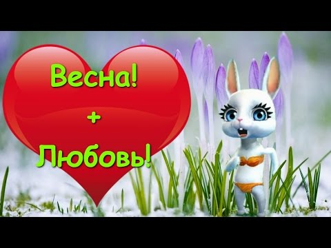 Zoobe Зайка Если в окно лучиком весна :-) - Как поздравить с Днем Рождения