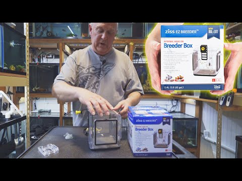 How To Use The Ziss Breeder Box | Aquarium Co-Op